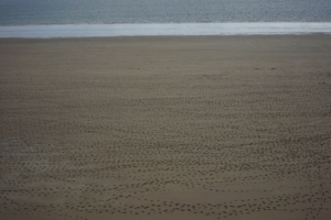 IM Wales Tenby beach