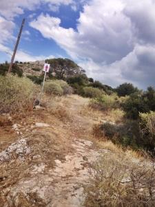 xterra Greece run course